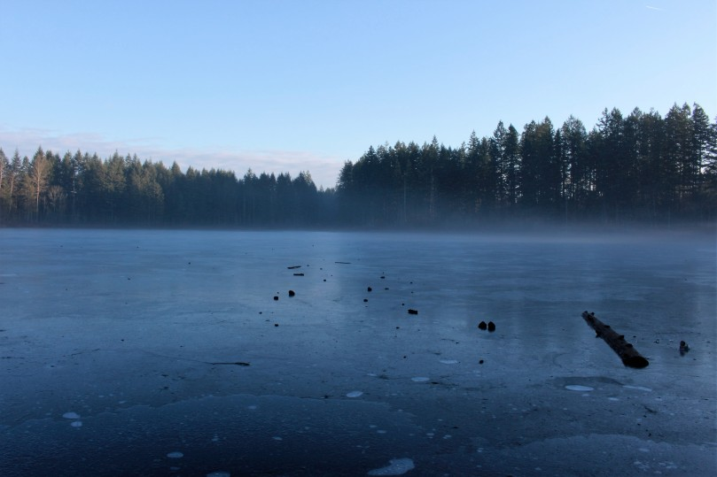 Fog on Yellow Lake